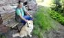 Urlaub mit Hund - Foto: K.Faul